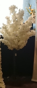 180cm Ivory Blossom tree £40