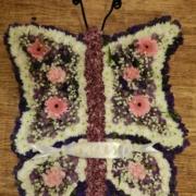 Butterfly £180
